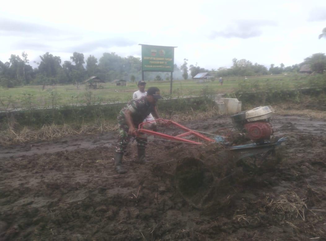 Babinsa Sioban Gembleng Petani Goiso'oinan Dalam Penggunaan Alat Mesin Pertanian