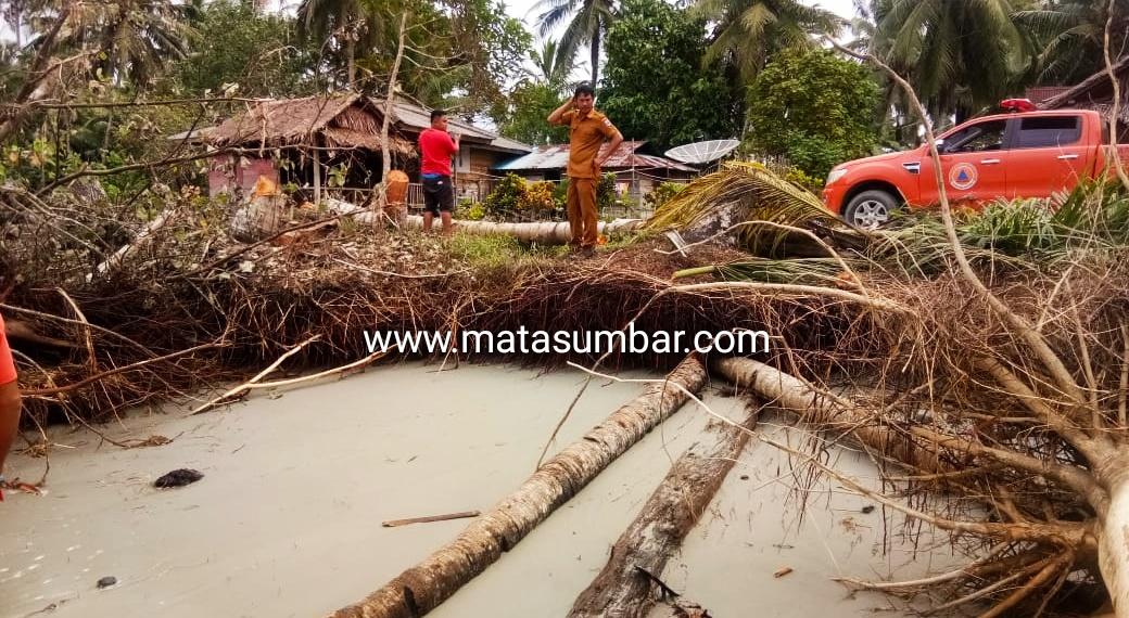 Rumah Warga Matobe Sipora Terancam Roboh Akibat Abrasi Pantai