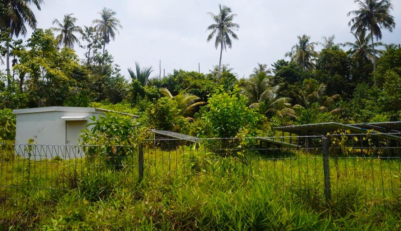 PLTS Bantuan BPBD Mentawai Tahun 2017 di Dusun Katiet di Hiasi Semak Belukar