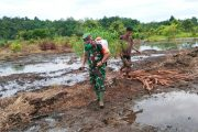 Maksimalkan Ketahanan Pangan, Babinsa Sioban Bantu Para Petani Garap Lahan Pertanian