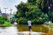 Banjir, Longsor dan Pohon Tumbang Terjadi di Beberapa Wilayah Kecamatan di Pasbar