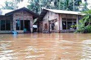 Sering Banjir, Sungai di Muaro Paneh Sudah Dangkal Akibat Sampah