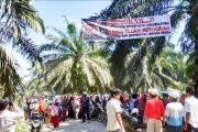 Demi Tanah Ulayat, Masyarakat Tanjung Pangka Rela Tidur Dilokasi dan Kecewa Dengan Pemerintah Setempat