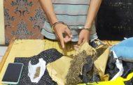 Simpan Daun Ganja Seberat 1 Kg, Seorang Pemuda di Siberut Selatan di Bekuk Satresnarkoba Polres Mentawai