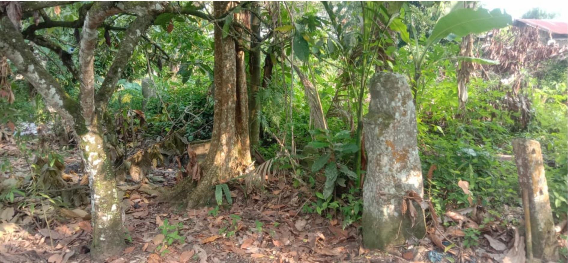 Batu Sandaran Ninik Situs Bersejarah Nagari Limbanang