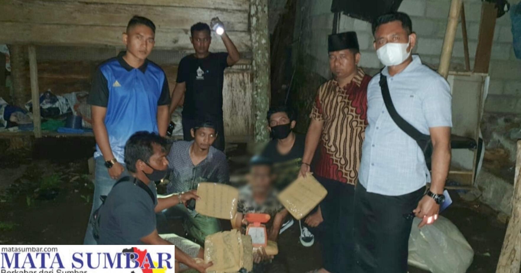 Miliki Empat Paket Besar Ganja Kering, Seorang Buruh di Pasbar di Ringkus Polisi