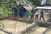 Pemilik Kolam di Dusun Mapaddegat Berbagi Ilmu Budi Daya Ikan Lele Dengan Satgas TMMD