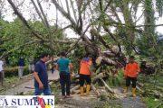 Sejumlah Fasum dan Rumah Warga di Pasbar Mengalami Rusak Akibat di Hantam Angin Kencang