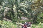 Tahun 2021, Desa Giri Maju Salah Satu Target Pembangunan di Kecamatan Luhak Nan Duo