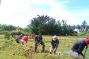 Bantu Kesulitan Masyarakat, Babinsa Koramil 02 Ranah Pesisir Perbaiki Saluran Irigasi