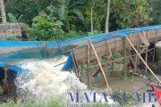 Saluran Irigasi di Koto Nan Tigo Selatan Surantih Jebol, Petani Terancam Gagal Panen