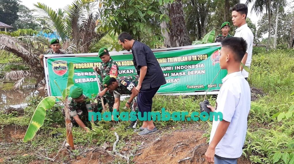 Gerakan Kembali Budaya Penghijauan, Kodim 0319/Mentawai Tanam 80 Batang Pohon Sukun
