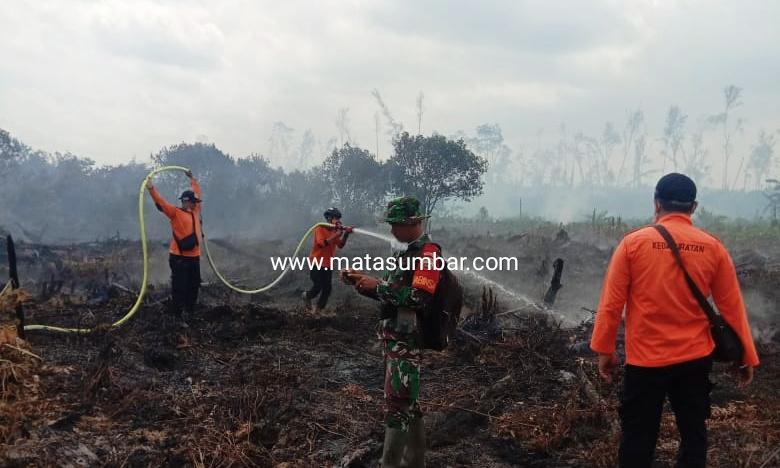 53 Hektar Lahan HPK di Pessel Terbakar, 6 Titik Api Masih Upaya Pemadaman