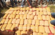 Tim Gabungan BNNP Sumbar Berhasil Amankan 100 Kilogram Ganja Kering di Jalan Palembayan Agam