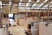 Gedung Semi Modren di Pasar Kambang Senilai 5,8 Miliar Kondisinya Semakin Memprihatinkan