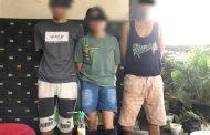 Miliki Sabu, Seorang IRT Bersama 2 Orang Laki-laki di Tangkap Tim Sapujagat Satnarkoba Pessel